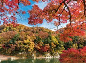 Осень в Японии – сбежать из серого Токио