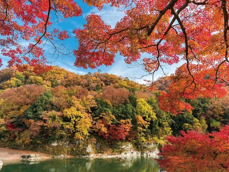 Осень в Японии – особое время, и глупо проводить его в столице.