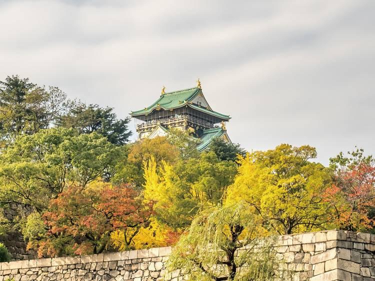 Осень в Осаке